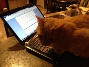 gatsby typing